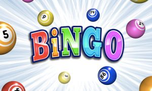 Play BINGO! on PC