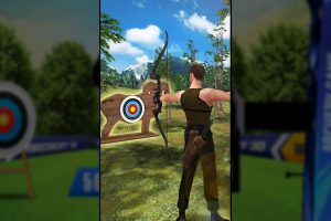 archery 3d shooting lock fire