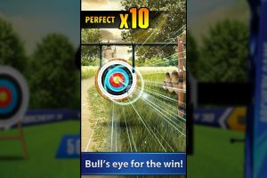 archery 3d shooting perfect