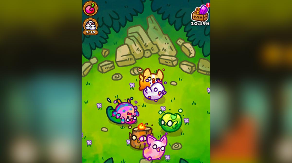 chichens running around the forest