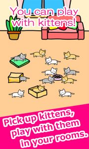 Play with Cats Inside Your Room
