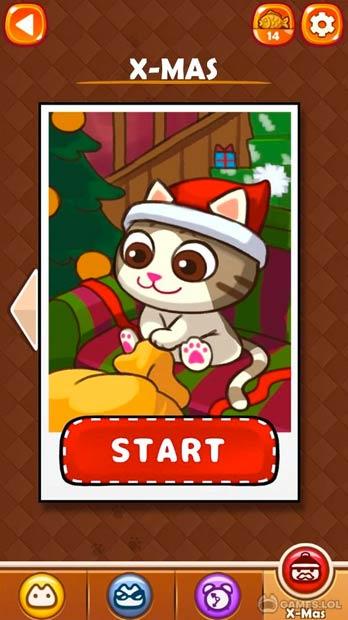 maze cat rookie download free