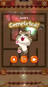 maze cat rookie download full version