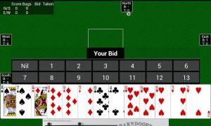 spades cards bids bags taken