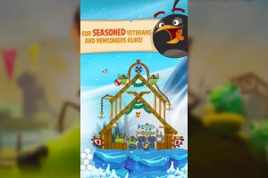 angry birds season seasoned veterans