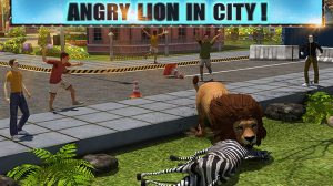 angry lion attack in the city