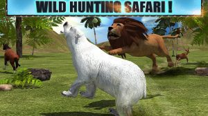 angry lion attack wild hunting safari