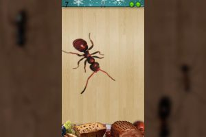 ant smasher christmas big red ant