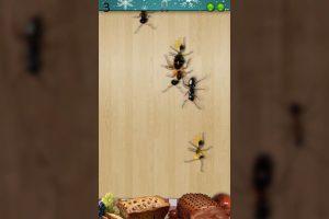 ant smasher christmas finger defense 1