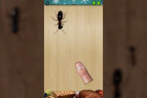 ant smasher christmas lone insect
