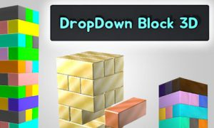 Play DropDown Block 3D on PC