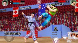 karate king fighter flying kick