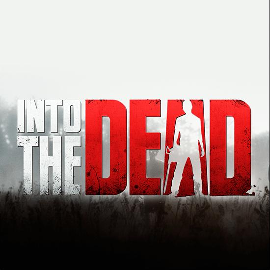 Into the Dead zombie survival