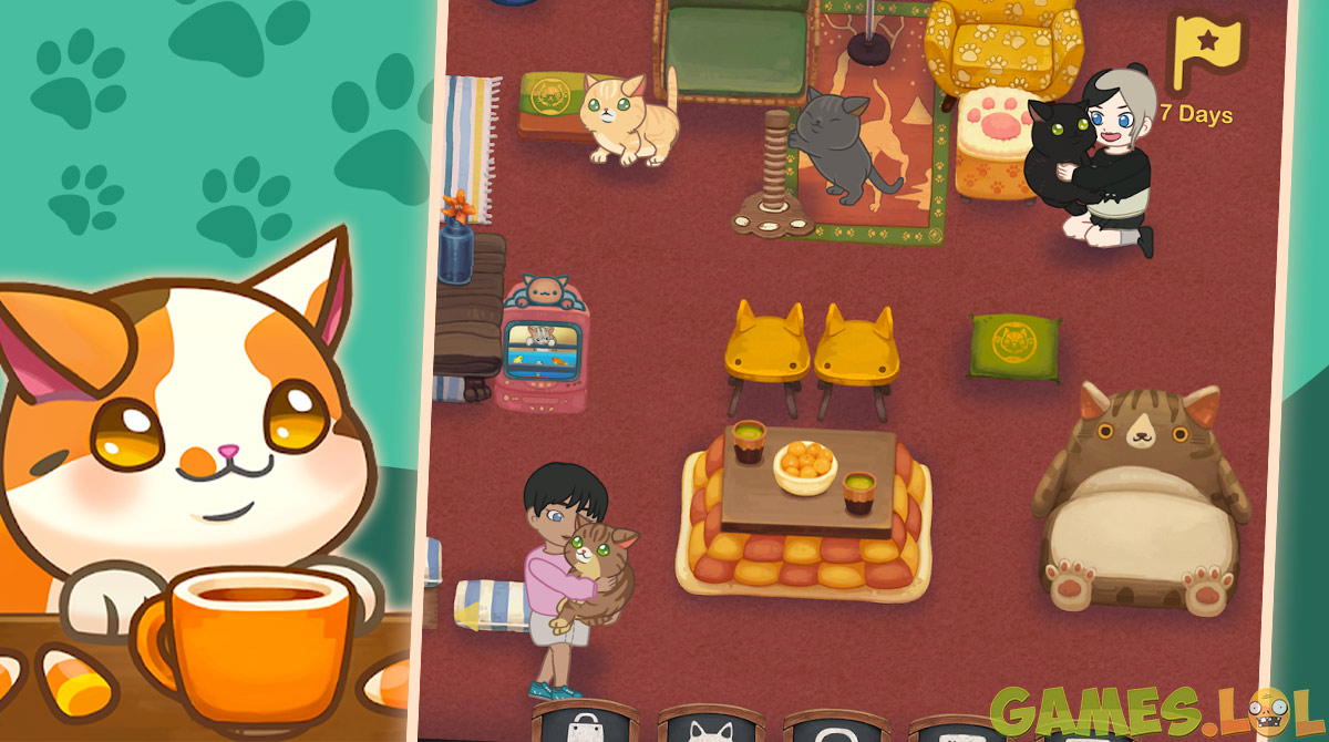 Furistas Cat Cafe Pet Friendly