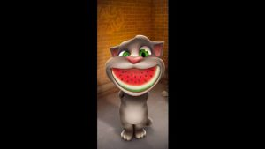 Talking Tom Cat Watermelon Smile
