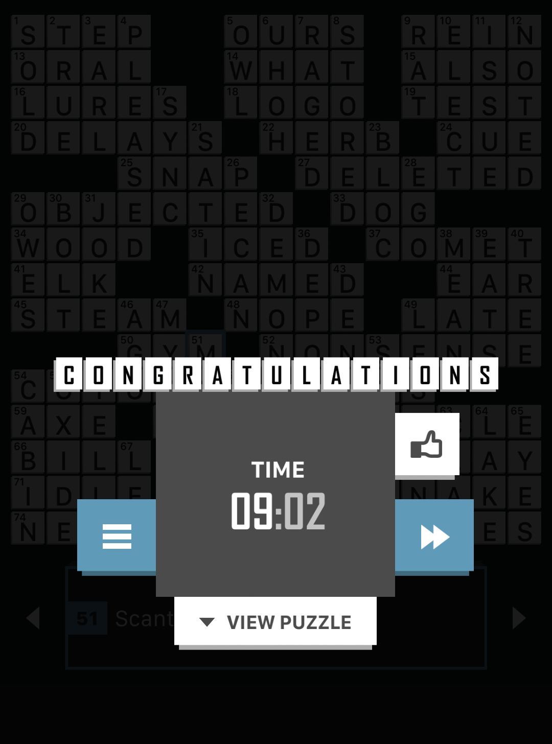 Crossword puzzle beat the records