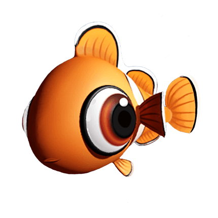 Fish Live Clown Breed