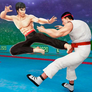 Play Tag Team Karate Fighting Games: PRO Kung Fu Master on PC