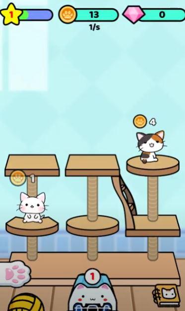 Cat Condo Cats