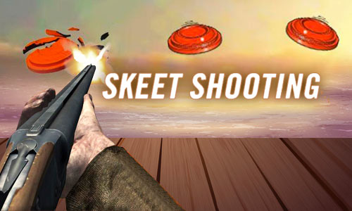 Play Skeet Shooting 3D on PC