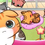 cat room cute hints tricks