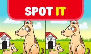 Play Spot it: Find the Difference on PC