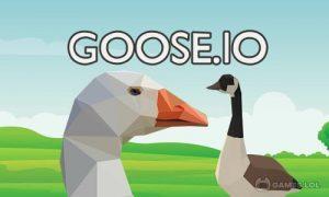 Play GOOSE.IO on PC