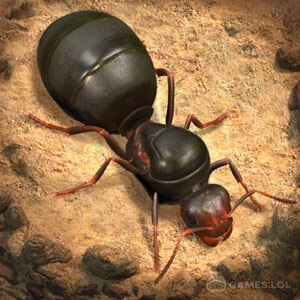 the ants free full version