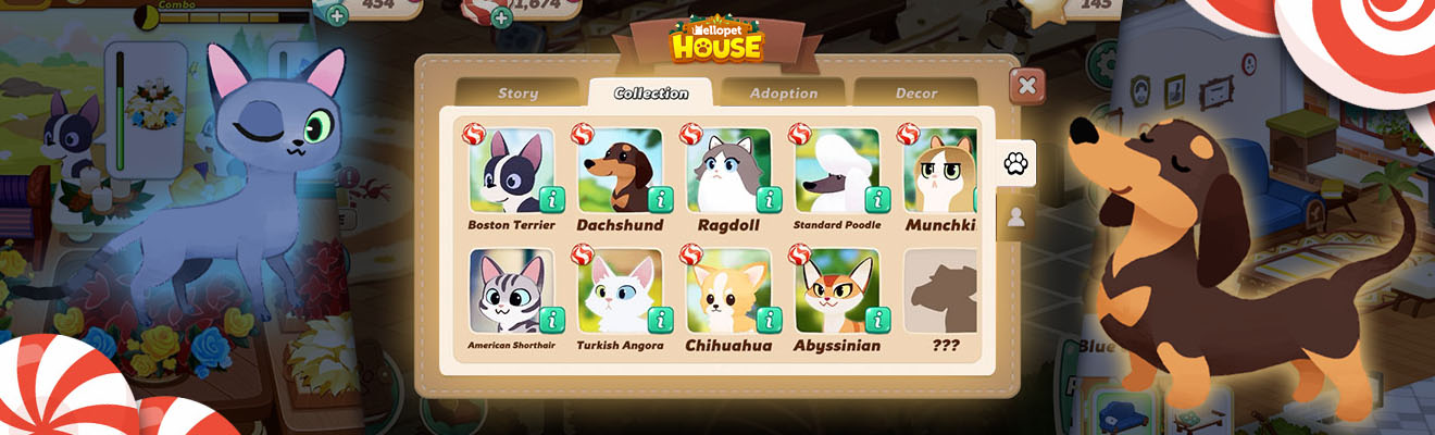 hellopet house tips and tricks